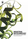 Industrial Biotechnology - More than green fuel in a dirty economy?